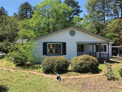 West Columbia Single Family Home For Sale: 146 Lynn