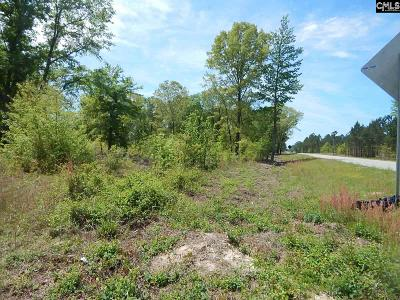 Kershaw County Residential Lots & Land For Sale: 2563 Highway 1