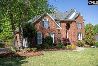 Lexington County Single Family Home For Sale: 919 Seabrook
