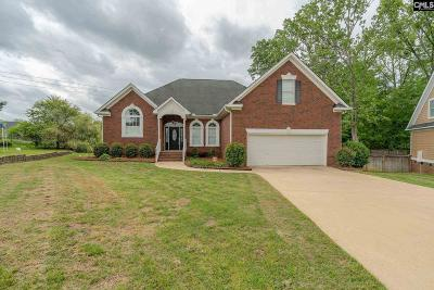 Lexington Single Family Home For Sale: 216 Shoal Creek