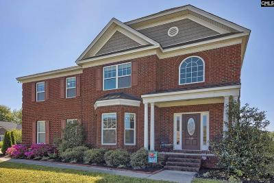 Lexington County Single Family Home For Sale: 233 Pisgah Flats