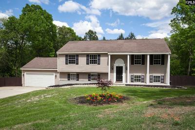 Irmo Single Family Home For Sale: 125 Winesett