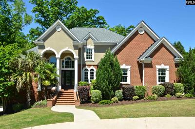 Lexington County Single Family Home For Sale: 111 Silver Wing