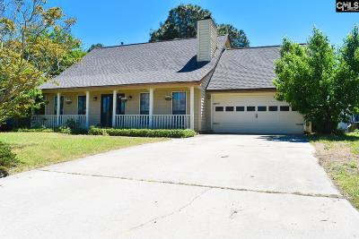 Lexington County, Richland County Single Family Home For Sale: 227 Chimneyridge Dr.