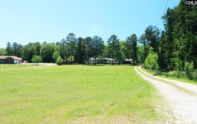 Lexington County Single Family Home For Sale: 2052 Island