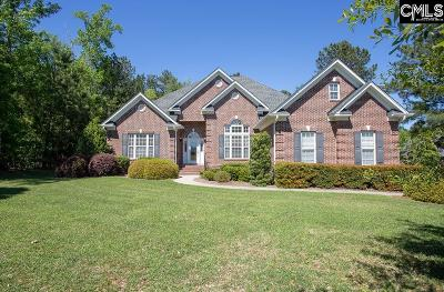 Lexington County Single Family Home For Sale: 109 Pintail Lake