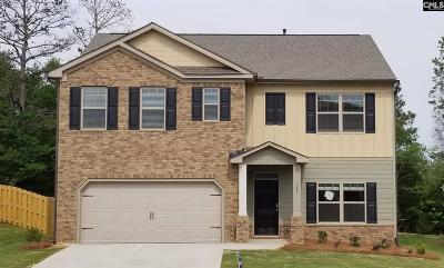 Lexington Single Family Home For Sale: 117 Village View