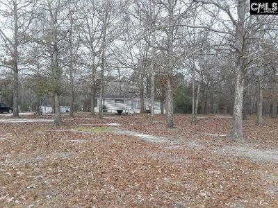 Orangeburg Single Family Home For Sale: 186 Cloverdale