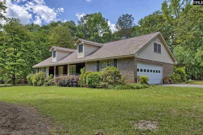 Lexington County, Richland County Single Family Home For Sale: 456 Catawba