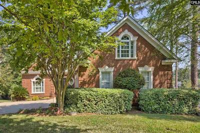 Chapin Single Family Home For Sale: 225 Pointe Overlook