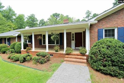 Chapin Single Family Home For Sale: 162 Pinewood