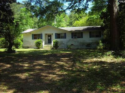 Lexington County, Richland County Single Family Home For Sale: 1042 Spring Crossing