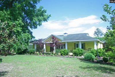 Wagener Single Family Home For Sale: 13A&B Winding