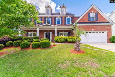 Lexington County, Richland County Single Family Home For Sale: 324 Southberry