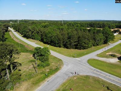 Monetta, Ridge Spring, Wagener, Johnston, Pelion, Newberry, Ward Residential Lots & Land For Sale: Highway 219