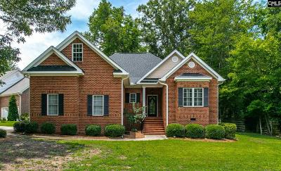 Lexington County Single Family Home For Sale: 387 Night Harbor