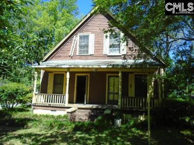 Orangeburg Single Family Home For Sale: 423 Bayne