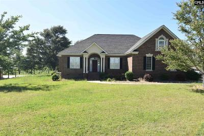 Lexington SC Single Family Home For Sale: $549,000
