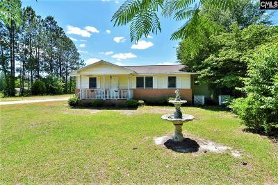 West Columbia Single Family Home For Sale: 99 L