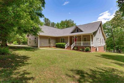 Blythewood Single Family Home For Sale: 9257 S Us Highway 321
