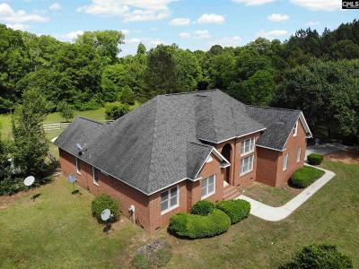 Newberry County Single Family Home For Sale: 4097 Hughey Ferry