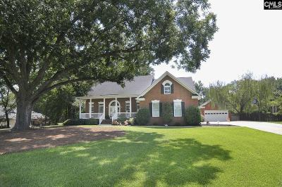 Chapin, Gilbert, Irmo, Lexington, West Columbia Single Family Home For Sale: 101 Wintergreen Ct