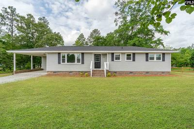 Lexington County, Richland County Single Family Home For Sale: 362 Dooley