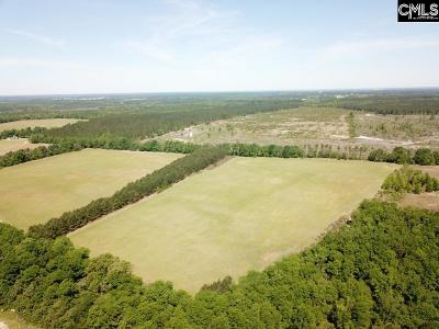 Monetta, Ridge Spring, Wagener, Johnston, Pelion, Newberry, Ward Residential Lots & Land For Sale: South Dixie