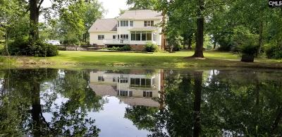 Lexington County, Richland County Single Family Home For Sale: 405 Wise Ferry Rd