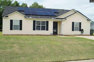 Columbia Single Family Home For Sale: 211 Denby