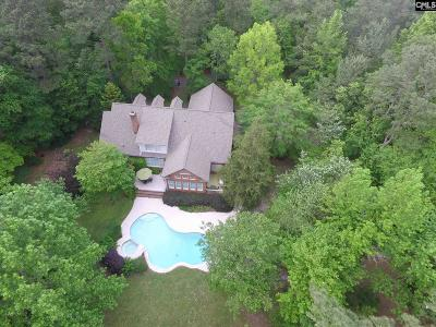 Blythewood Single Family Home For Sale: 956 Langford