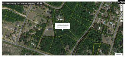 Lexington County, Richland County Residential Lots & Land For Sale: 113 Pleasant View