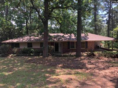 Lexington County Single Family Home For Sale: 5828 Ellisor