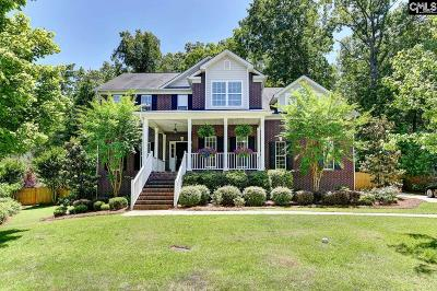 Irmo Single Family Home For Sale: 209 Stonemont