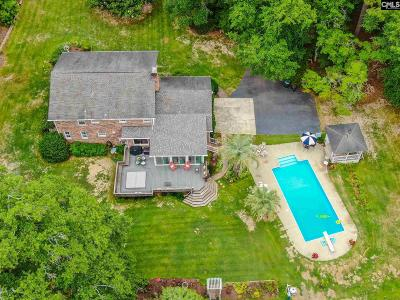 Lexington Single Family Home For Sale: 301 Pond View Ln