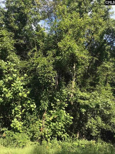 Lexington County, Richland County Residential Lots & Land For Sale: 2009 Hwy 378