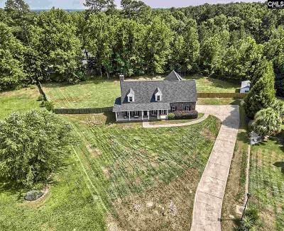Lexington Single Family Home For Sale: 108 Otto Hegman