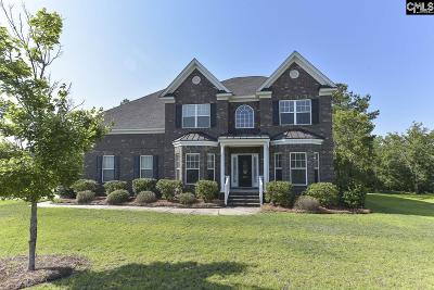Blythewood Single Family Home For Sale: 622 Whistling Kite Drive