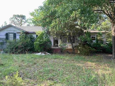 Lexington County, Richland County Single Family Home For Sale: 1208 Lassitter Jacobs