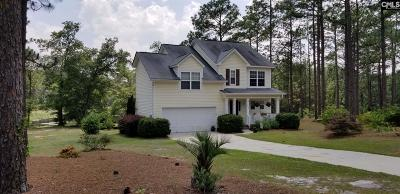 Single Family Home For Sale: 1990 Old Orangeburg Rd