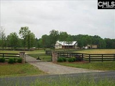 Lexington County, Newberry County, Richland County, Saluda County Single Family Home For Sale: 256 N&l Dairy