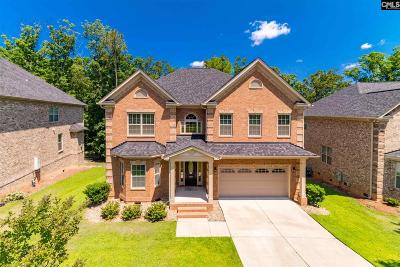 Chapin Single Family Home For Sale: 329 Lighthouse