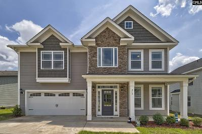 Lexington County Single Family Home For Sale: 210 Dove Chase