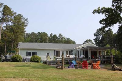Lexington County Single Family Home For Sale: 117 Ranch Lake