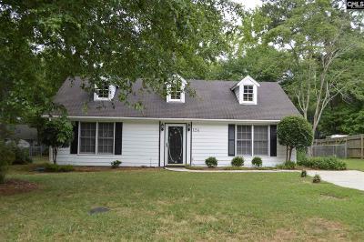 Irmo Single Family Home For Sale: 124 Oak Hampton