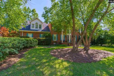 Lexington County Single Family Home For Sale: 419 W Passage