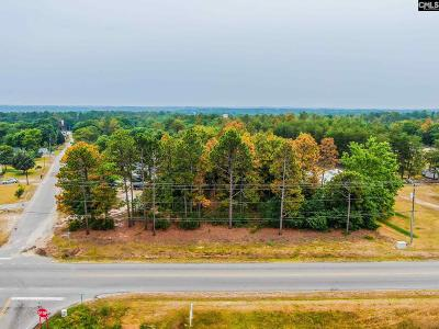 Residential Lots & Land For Sale: Two Notch Rd