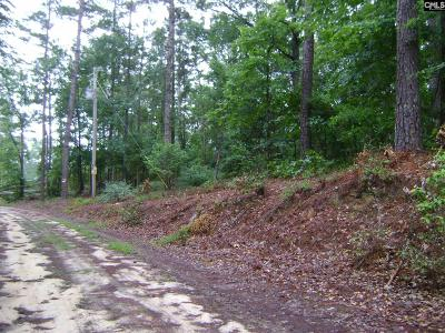Lugoff Residential Lots & Land For Sale: Parcel A McCords Ferry