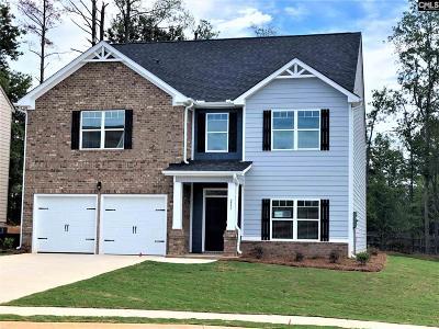 Lexington Single Family Home For Sale: 217 Village View