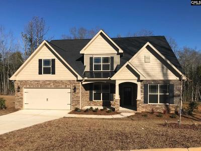 Lexington County Single Family Home For Sale: 227 Chapin Brook